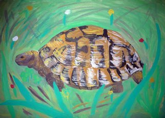 Alexander Hinovsi; Turtle, 2019, Original Painting Acrylic, 50 x 35 cm. Artwork description: 241  Artwork is draw with acrylic paint.  In Post- Impressionistic stile. ...