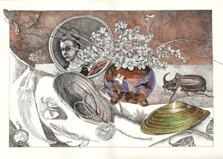 Alexandra Dvinyaninova; Still Life With Beetle, 2011, Original Drawing Pen, 42 x 29.7 cm. Artwork description: 241  Still life picture with beetle. It took a long time to make this drawing. I used for it some shells, dead rhinoceros beetle, my necklace and the mirror.  ...