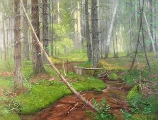 Alexander Bezrodnykh; Stream In The Forest, 2006, Original Painting Oil, 80 x 60 cm. Artwork description: 241 Stream in the forest, Stream, the forest, ...
