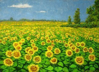 Alexander Bezrodnykh; Sunflowers, 2014, Original Painting Oil, 80 x 60 cm. Artwork description: 241 sunflowers, field, the sun, ...