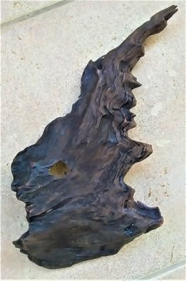 Anastasia Pourliotou; Natural Walnut Tree Bark, 2017, Original Crafts, 1.1 x 1.1 cm. Artwork description: 241 Portrait natural walnut tree bark003Found in 2017 on the Aegean coast.  There has been no technical or constructional intervention, both in shape and in color, showing the natural evolution of the wood.It has two natural holes where it brings us to a strange face.Lightly varnished ...