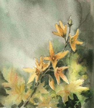 Joanna Pasek; Forsythia, 2012, Original Watercolor, 20 x 24 cm. Artwork description: 241  Waatercolors on Torchon paper. My original drawing, signed on the backside.     ...