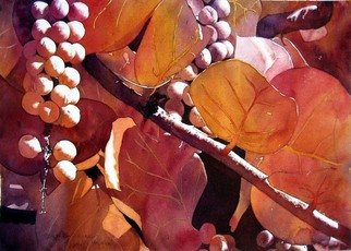 Jaimie Cordero; SeaGrapes In Autumn, 2008, Original Watercolor, 19 x 13 inches. Artwork description: 241  Abstracted vision of SeaGrape leaves exaggerating the line, light, and shadow. Painted experimentally with non- realistic colors. ...