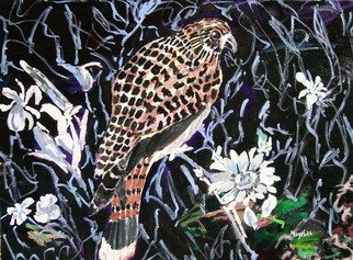 Mary Hatch; Night Hawk, 2012, Original Painting Acrylic, 40 x 30 inches. Artwork description: 241  Part of the Bird, Flora and Fauna Series. Night Hawk with black background and white flowers. ...