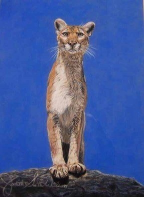 Judith Smith Wilson; Magnificent Cougar, 1991, Original Pastel, 17 x 22 inches. Artwork description: 241  Cougar standing on ridge surveying the landscape.  Original Pastel $6,500. 00.  No Prints Available....