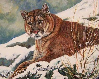 Judith Smith Wilson; Winter In Montana, 1998, Original Watercolor, 8 x 10 inches. Artwork description: 241  Young cougar enjoying the winter snow. Original Painting $l, 300. 00  Open Edition Prints.  $35. 00...