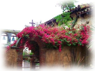 Tammy Gatten; The Misson, 2007, Original Photography Color, 20 x 16 inches. Artwork description: 241  Fusia flowers on the Old San Juan Capistrano Misson in California, USA. The swallows return every year. ...
