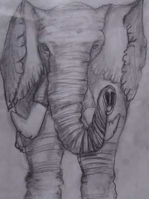 Ashley Everett; Elephant Drawing In Pencil, 2019, Original Drawing Pencil, 11 x 13 inches. Artwork description: 241 Elephant drawing done in pencil.  Note for buyer I offer drawings and paintings with or without canvas.  If you are wanting this I will be drawing painting you a new one. . .  So you re able to make adjustments to your liking. . .  You can even have this done ...