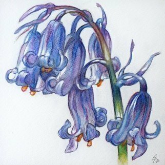 Austen Pinkerton; Bluebells, 2020, Original Watercolor, 16 x 16 cm. Artwork description: 241 Small bunch of bluebell flowers...
