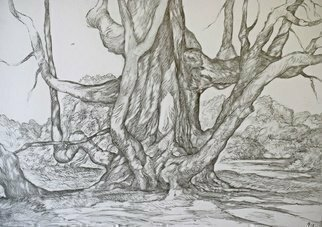 Austen Pinkerton; The Great Twisted Tree, 2019, Original Drawing Graphite, 42 x 30 cm. Artwork description: 241 Do plants have a soul  Yes of course they do. ...