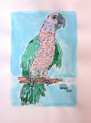 Claudio Barake; PARROT, 2008, Original Watercolor, 25 x 33 cm. Artwork description: 241   ORIGINAL WATERCOLOR ON CANSON PAPER.    ...