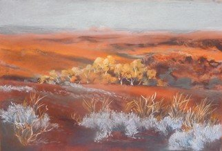 Bernice Wright; Saltbush, 2010, Original Pastel, 52 x 33 cm. Artwork description: 241        On painting trip to the Karijini National Park  in the Pilbara region of Western Australia. The orange glow covering the land, the bright sunlighr catching the trees and the prominent saltbush catching your eye, what more could you ask for.  It had to be pastels. . . ...