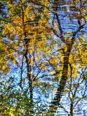 Bruce Lewis; Dreams Of Autumn, 2019, Original Photography Digital, 15 x 20 inches. Artwork description: 241 The images contains a number of different captures.  The result provides this reflection with dream like quality...
