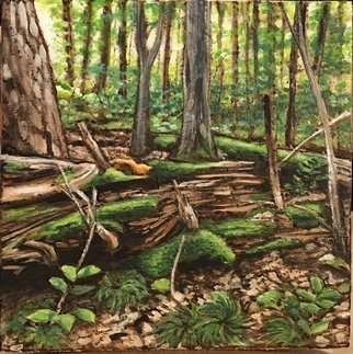 Bonie Bolen; Forest Scene, 2017, Original Printmaking Woodcut, 6 x 6 inches. Artwork description: 241 small wood burning and paint on wood...