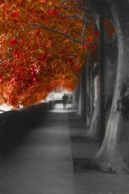 Erik Brede; Autumn Promenade, 2016, Original Photography Black and White, 60 x 90 cm. Artwork description: 241 The photo was taken at the river Garonne in Toulouse, France, digitally optimized, layered with textures and digital painted. 60x90cm Printed on HahnemA1/4hle FineArt Baryta, Glossy, 325gsm archival, museum grade paper with Epson Inkjet 11880 and 9 color K3 pigment inks, that ensure even the smallest ...