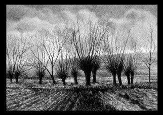 Calin Baban; Trees, 2020, Original Drawing Graphite, 100 x 70 cm. Artwork description: 241 A PIECE FROM NATURE...