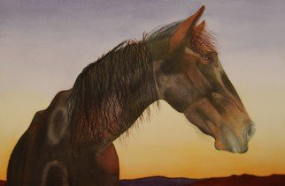 Carolyn Judge; Sunset Profile, 2010, Original Watercolor, 40 x 27 cm. Artwork description: 241  We photographed this horse in the North of the North Island of New Zealand.  The timing was perfect as the sun was setting over the Tasman Sea.  We fed this horse and his two companions some of our morning muesli and they repaid us by posing for ...