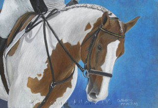 Catherin Mcmillan; Collection, 2008, Original Pastel, 14 x 10 inches. Artwork description: 241  Head and shoulder study of a paint horse in the dressage ring.  ...