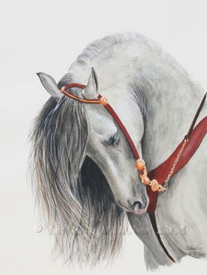 Catherin Mcmillan; Equis, 2008, Original Watercolor, 10 x 14 inches. Artwork description: 241  Water colour painting of an Andalusian horse head  ...
