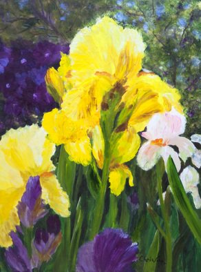 Chris Jehn; Yellow And Purple Iris, 2017, Original Painting Acrylic, 18 x 24 inches. Artwork description: 241 Bright purple and yellow iris. Up close...