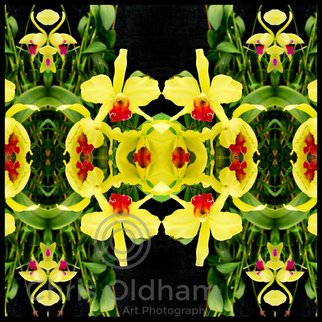 Chris Oldham; Varsuum, 2016, Original Photography Digital, 24 x 24 inches. Artwork description: 241  Orchid photographed and reflected to amplify the inherent beauty, symmetry and sacred geometry present in all nature. ...