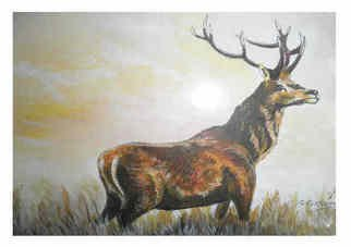 Chris Clarke; Prince Of Stags, 2011, Original Painting Acrylic, 12 x 9 inches. Artwork description: 241    english art/ art/ arts/ artists/ artist/ canvas/ pictures/ prints/ crafts/ paintings/ acrylic/ acrylics/ oils/ brushes/ gifts/ presents/ somerset/ english / national trust/ villages/ postcards/ greetings/ cards/ posters/ landscapes/ uk/ west country/ countryside/ arts and crafts/ shop/ home/ animals/ stags/ deer/ red deer/ roe deer/ hinds/ calves/ antlers/ horns/ ...