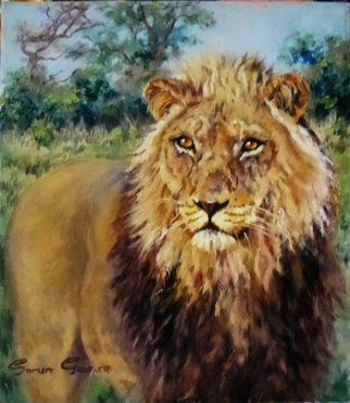 Sonja Grobler; A Protrait, 2013, Original Painting Oil, 36 x 42 cm. Artwork description: 241  A portrait of a male lion ...