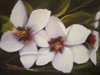 Colleen Balfour; Almond White, 2009, Original Painting Oil, 610 x 406 cm. Artwork description: 241   flowers, white, still life, bouquet, flora ...