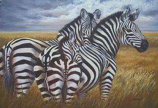 Colleen Balfour; Still Before The Storm  , 2001, Original Painting Oil, 32 x 24 inches. Artwork description: 241 Oil on masoniteUnframedAlways alert, zebras teach us how to live in the moment, maximizing the quiet restful times....