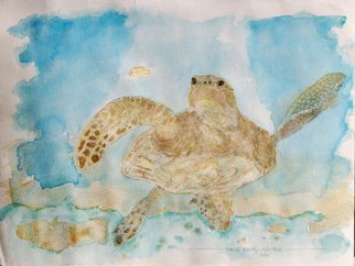 David Rocky Aguirre; Hawaiian Turtle, 1994, Original Watercolor, 12 x 9 inches. Artwork description: 241   Hawaiian sea turtle. Watercolor on paper.  ...
