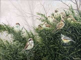 David Larkins; Juniper Covey, 2017, Original Painting Acrylic, 24 x 18 inches. Artwork description: 241 I have a bird feeder outside of my studio window, which I installed to give me a peaceful break from painting when needed.This winter a covey of Sparrowi? 1/2s and Tufted Tit Mouse birds decided to take up residence in the Juniper bush by the bird ...