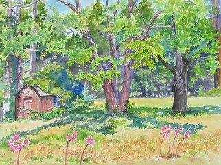 Debra Lennox; Smallest Bottle Museum In..., 2005, Original Watercolor, 42 x 30 inches. Artwork description: 241  This tiny building under the walnut trees on Soda Springs Creek, Comptche holds shelves of a historical bottle collection, gathering dust. ...
