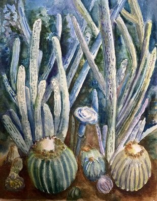 Deborah Paige Jackson; Conservatory Cactus, 2020, Original Watercolor, 8 x 10 inches. Artwork description: 241 Watercolor on paper of live cactus at the Conservatory. ...