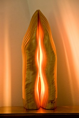 Dermot O'Brien; Resonance1, 2009, Original Sculpture Wood, 20 x 52 cm. Artwork description: 241   Light sculpture birch ...