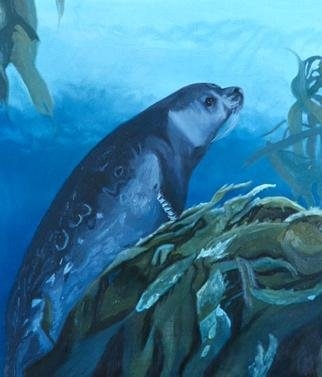 Donna Schaffer; Harbor Seal In Monterey B..., 2001, Original Painting Oil, 28 x 32 inches. Artwork description: 241 A Monterey Bay harbor seal rest on the top edge of some kelp about 40 feet under the surface of the water. Based on an underwater slide taken by the artist. ...