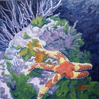 Donna Schaffer; Rainbow Starfish In Monte..., 2001, Original Painting Oil, 20 x 20 inches. Artwork description: 241 Oil painting on canvas of a rainbow starfish that' s found in Monterey and Carmel Bays. Based on artist' s personal underwater photography. This painting was featured on the December, 2002 cover of California Diving News. ...