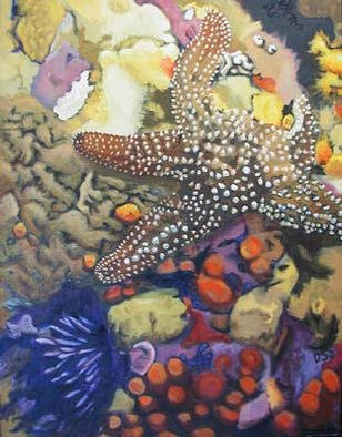 Donna Schaffer; Spiney Starfish, 2002, Original Painting Oil, 22 x 28 inches. Artwork description: 241 Found in the waters of Northern California, this starfish is based on one of my underwater slides. ...