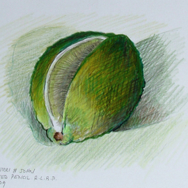 Lou Posner, , , Original Drawing Pencil, size_width{Lime-1231452239.jpg} X 4.2 inches