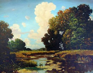 Dusan Vukovic; Hot Summer, 2012, Original Painting Oil, 40 x 50 cm. Artwork description: 241 realism, river, summer, landscape, oil, canvas, ...