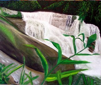 Edgard Loepert; WATERFALL OF PEDRA BRANCA, 2006, Original Painting Oil, 60 x 50 cm. Artwork description: 241  A beautiful and expressive waterfall in Brazzil ...