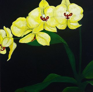 Elizabeth Bogard; Tres Flores, Orchids, 2015, Original Painting Acrylic, 12 x 12 inches. Artwork description: 241  abstract representative painting, flower painting, flowers paintings, floral paintings, black painting, yellow paintings, green painting, orchid painting, orchids paintings, nature paintings, one flower painting, three panel painting, black and white painting, floral set paintings, panels paintings, tearoom paintings, entrance hall paintings, bedroom paintings, bathroom paintings, dining room ...