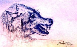 Elisha Sherman; Mohegan Wolf, 2004, Original Drawing Pencil, 17 x 11 inches. Artwork description: 241  Dedicated to the surviving Tribe and Peoples of Norwich, CT ...