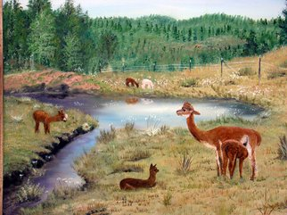 Ellen E Hinson; ALPACA MEADOW, 2007, Original Painting Oil, 20 x 16 inches. Artwork description: 241  This is an original oil painting of alpacas in a lovely meadow setting. ...
