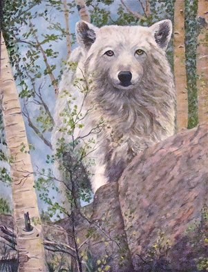 Ellen E Hinson; Watching You, 2015, Original Painting Oil, 18 x 24 inches. Artwork description: 241  Wolf, Wildlife, Oil, Colorado Wolf, White Wolf ...