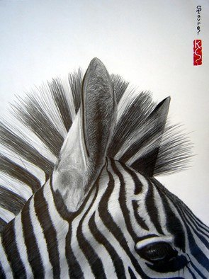 Eric Stavros; Zebra Close Up, 2009, Original Drawing Pencil,   cm. Artwork description: 241  graphite pencils, from 2H to 8B, blending stumps, kneaded eraser, typing eraser, on A3 Canson 160g.about 20 hours. . . . . . . . . .     ...