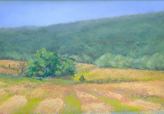 E S Desanna; Just Mown, 2008, Original Pastel, 13 x 9 inches. Artwork description: 241 18x14 simple gold frame with off white mat. Living in a rich agricultural area, I enjoy seeing the patterns made by plows and tractors in the fields. This is a mid- summer plein air work, done on a beautiful, clear day. ...