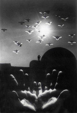 Itzhak Ben Arieh; BIRDS, 2000, Original Photography Black and White, 20 x 30 cm. Artwork description: 241   FANTASTIC PHOTOGRAPHY  ...
