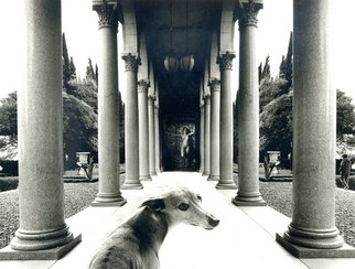 Itzhak Ben Arieh; THE DOG, 1996, Original Photography Black and White, 29 x 21 cm. Artwork description: 241   PHOTOMONTAGEFANTASTIC PHOTOGRAPHY ...