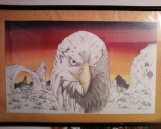 Alejandro Jake; Eagle, 2009, Original Crafts, 32 x 18 inches. Artwork description: 241  An custom Eagle Drawing I Did using different methods of style. ...