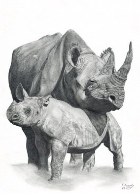 Frances Vincent; Mother And Baby Rhino, 2011, Original Drawing Pencil, 20 x 16 inches. Artwork description: 241  Animals, Rhino, Wildlife, African animals, Wildlife Art, Pencil, Black and White, Drawing,   ...